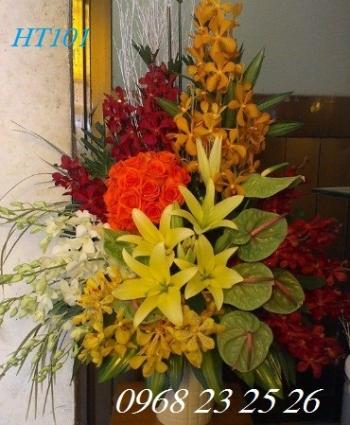 hoa ht101