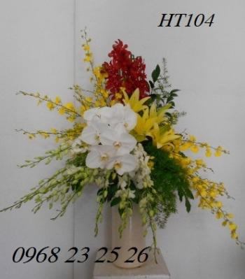hoa ht104