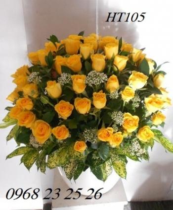 hoa ht105