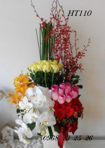 hoa ht110