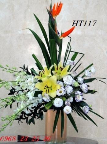 hoa ht117
